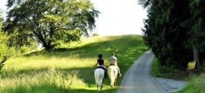 sentiero_a_cavallo